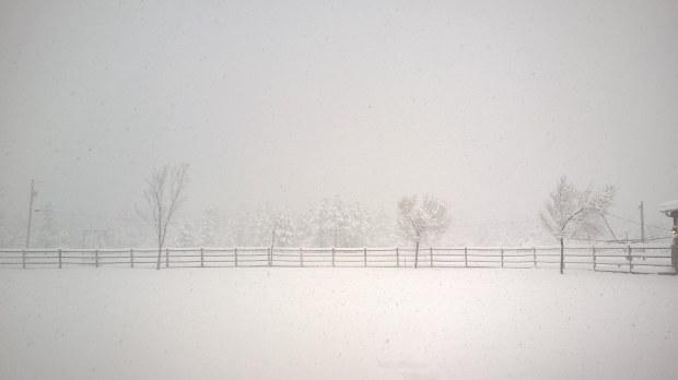 Ranch Snow